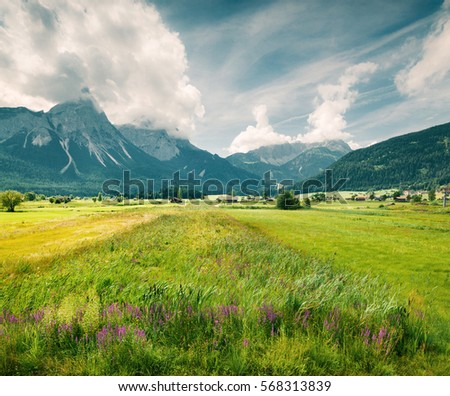 Green meadow on the Golf club Zugspitze, Lermoos village location. Colorful summer morning in  Austrian Alps, Reutte district, state of Tyrol, Austria, Europe. Instagram effect toning. #568313839