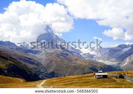 Matterhorn with yellow field in foreground, Swiss #568366501