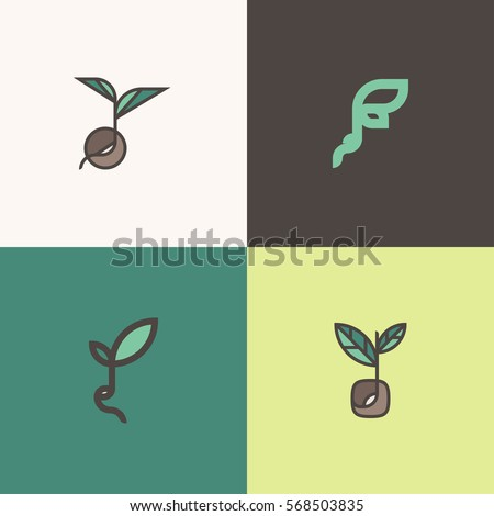 Freshly grown organic sprouts and shoots. Set of modern line logo mark templates with sprouting seeds and beans Royalty-Free Stock Photo #568503835