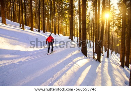 Nordic ski skier on the track in beautiful forest in sunrise light - sport active photo with space for your montage - Illustration picture for winter olympic game in pyeongchang 2018