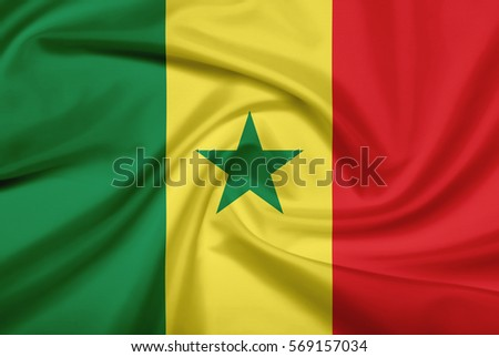Senegal flag with fabric texture. Flag of Senegal. 3D illustration. #569157034