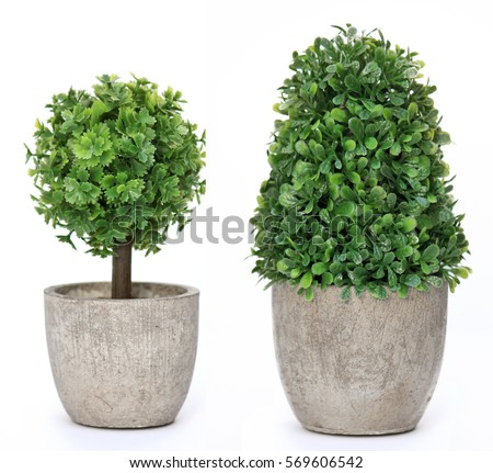 Set trees that decorate the room. Pot fake plant isolated on white #569606542