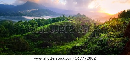 beautiful landscape nature of rain forest and mountain panorama background. green hill by trees and plants. nice place for outdoor travel on vacation or holidays. tropical forest of thailand.