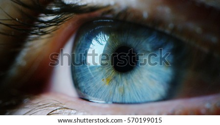 perfect blue eye macro in a sterile environment and perfect vision in resolution 6k,  concept, the vision of the future and healthy life concept. view precise and straight to the target. Royalty-Free Stock Photo #570199015