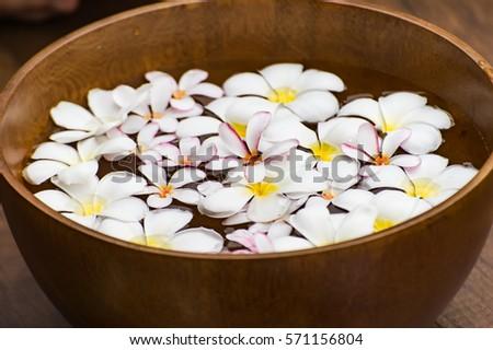 Spa massage compress balls, herbal ball and treatment spa, Thailand, greenery tone 2017 #571156804