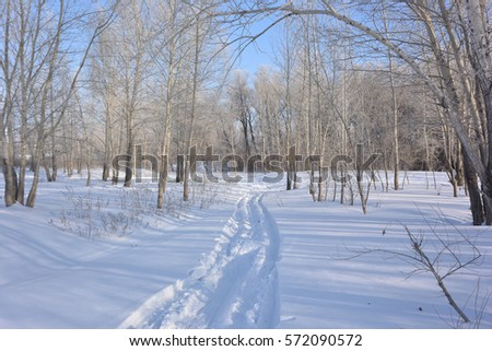 Winter Siberian city park, Omsk region  #572090572