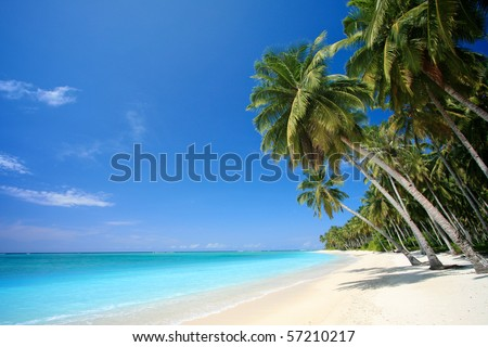 Landscape photo of tranquil island beach #57210217
