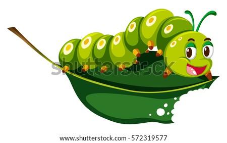 Cute caterpillar chewing green leaf illustration