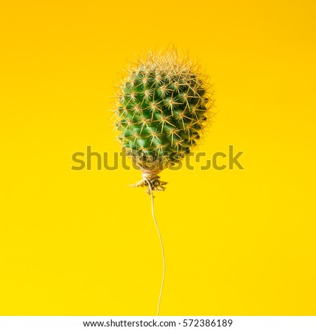 Cactus balloon on bright yellow background. Creative minimal concept.