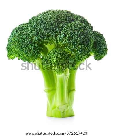Broccoli isolated on white background #572617423