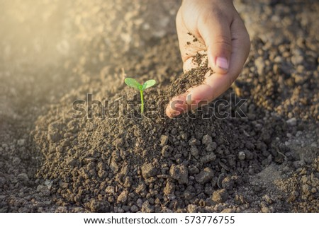 The left hand of the children are planting the seedlings into the soil. #573776755