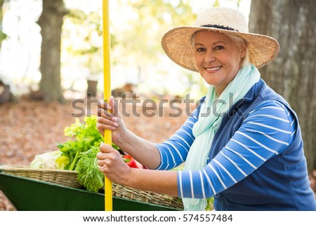 Portrait of confident mature female gardener with tool and wheelbarrow at garden #574557484