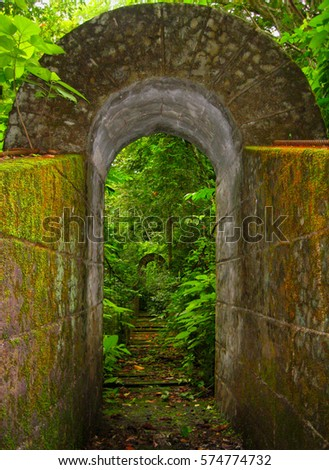 Old mossy bridge with vegetation near Monteverde, Costa Rica #574774732