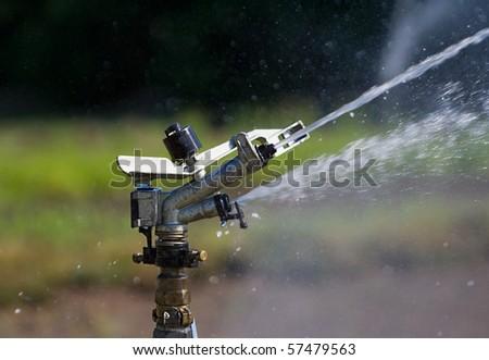sprinkler #57479563