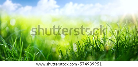 art abstract spring background or summer background with fresh grass Royalty-Free Stock Photo #574939951