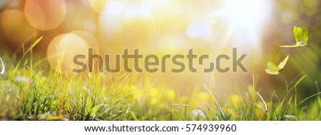 art abstract spring background or summer background with fresh grass and butterfly Royalty-Free Stock Photo #574939960
