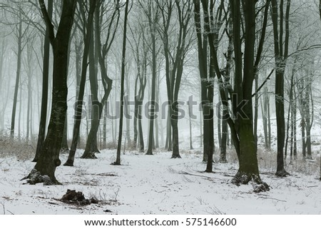 Magic train in frozen foggy winter forest #575146600