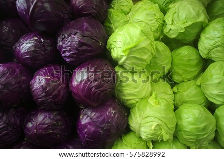Cabbage Patch Cabbage Royalty-Free Stock Photo #575828992