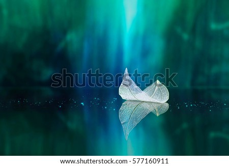 White transparent leaf on mirror surface with reflection on green background macro. Abstract artistic image of ship in waters of lake. Template Border natural dreamy artistic image for traveling #577160911