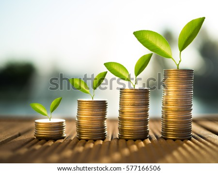 coins and money growing plant for finance and banking, saving money or interest increasing concept Royalty-Free Stock Photo #577166506