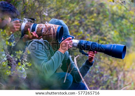 Professional wildlife photographers with very long lenses in forest shooting animal bird