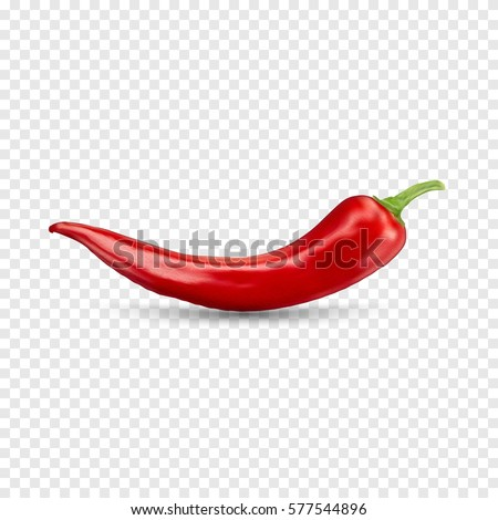 Red hot natural chili pepper pod realistic image with shadow vector illustration. Design for grocery, culinary products, seasoning and spice package, recipe web site decoration, cooking book. Royalty-Free Stock Photo #577544896