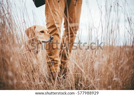 Hiker and dog standing in high grass Royalty-Free Stock Photo #577988929