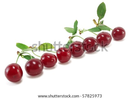 Ripe cherries isolated on white background #57825973