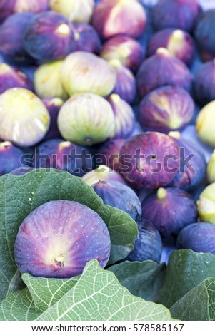 Black Fig #578585167