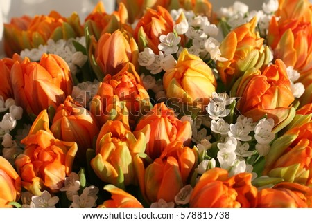 Bouquet of spring flowers and orange tulips in sunny weather #578815738