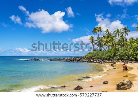 Laniakea Beach (Turtle Beach) on the North Shore, Oahu, Hawaii, USA Royalty-Free Stock Photo #579227737
