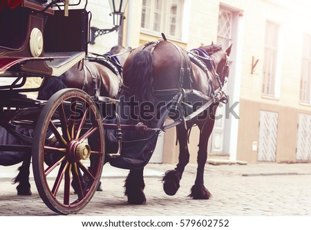 Horse and a beautiful old carriage in old town.  Royalty-Free Stock Photo #579602752