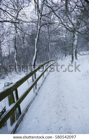 Path in a snowing environment with lots of fog and wind #580542097