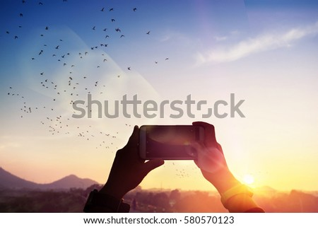 silhouette hand holding smartphone take photo at sunset and flare light