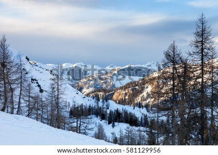 Beautiful winter landscape with snow covered trees #581129956