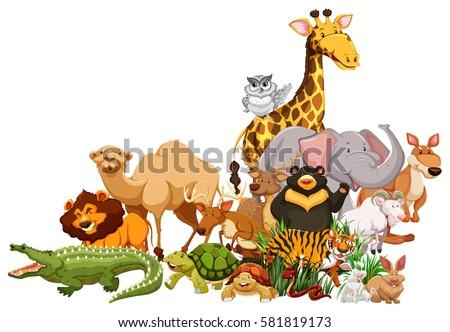 Cartoon wild animals background Stock Photo 454611202 - Avopix.com