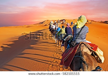 Camel caravan going through the desert in Morocco Africa at sunset Royalty-Free Stock Photo #582101515