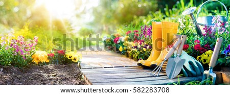 Gardening - Set Of Tools For Gardener And Flowerpots In Sunny Garden  #582283708