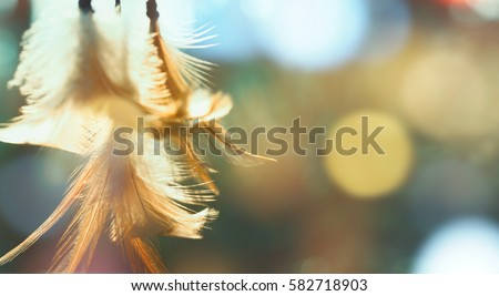 Dream catcher native american in the wind and blurred bright light background, hope and dream concept #582718903