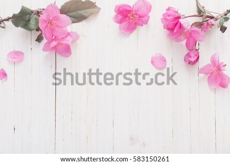 apple flowers on wooden background #583150261