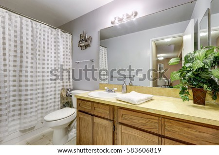 Fresh and clean bathroom interior with grey walls paint color, vanity cabinet and tub and shower combo. Northwest, USA #583606819
