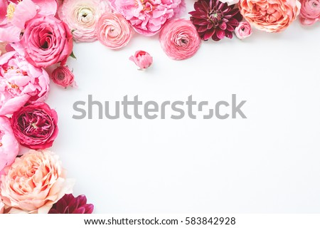 Pink floral / assorted pink flower border on white background Royalty-Free Stock Photo #583842928