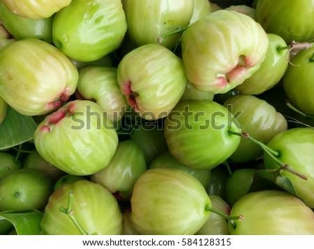 rose apple green. #584128315