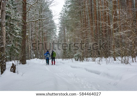 A small group of tourists traveling through the snowy woods in winter cloudy day.  #584464027