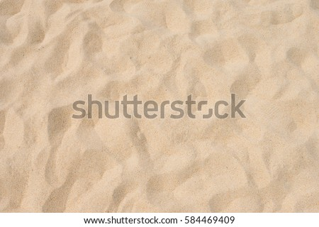 Fine beach sand in the summer sun #584469409