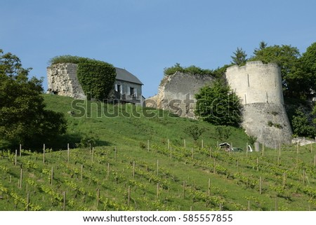 Vineyard and castle at Coucy le Chateau in Aisne, Picardie in north of France #585557855