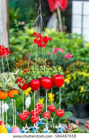 Dave plant in lovely pot in garden. #586487618