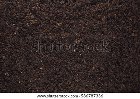 Fertile soil texture background seen from above, top view. Gardening or planting concept with copy space. Natural pattern #586787336