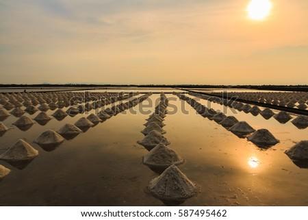 Beautiful landscape during sunset time. Salt farm in Thailand. #587495462