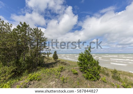 Sand Dune Ecosystem on the Shore of Lake Huron #587844827